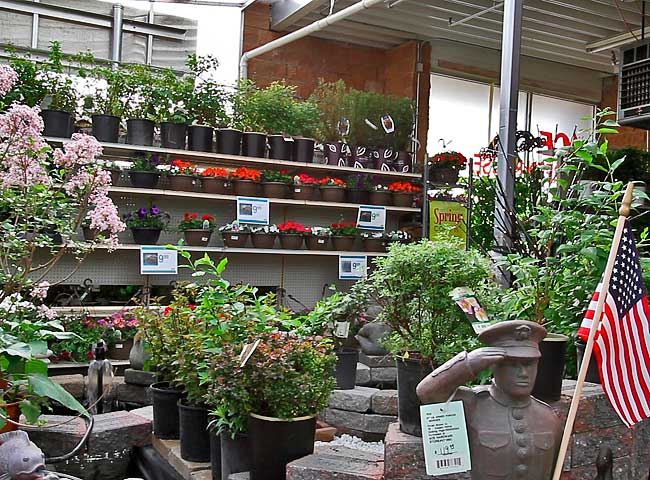Steadman's Ace Hardware Greenhouse