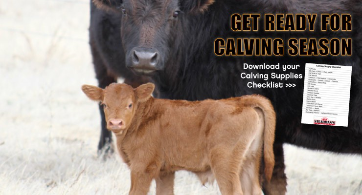 Home-Slider-Calving-Season