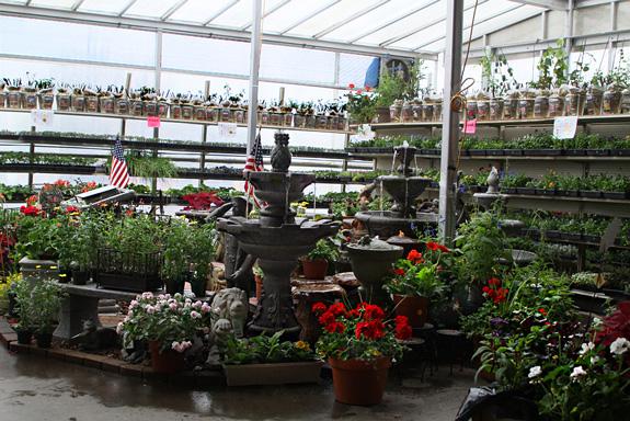 Greenhouse Miles City Montana